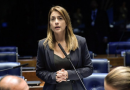 """Senadora afirma que o DEM, """"partido aliado"""" e Ativismo do judiciário atrapalham o Governo Bolsonaro"""