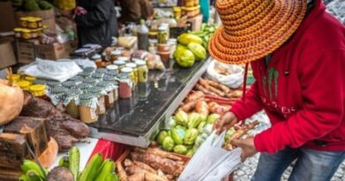 Comissão aprova margem de preferência a produtos orgânicos em licitações