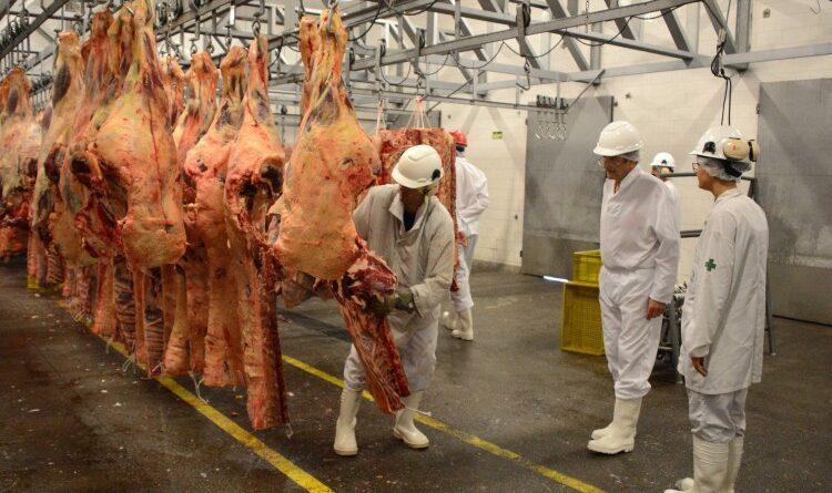 Projeto quer barrar exportações para baratear carne bovina